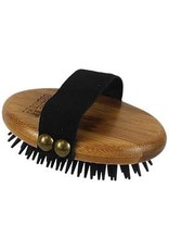 PAWS/ALCOTT BAMBOO CURRY BRUSH