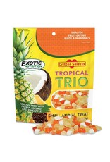 Exotic Nutrition Exotic Nutrition Critter Selects Tropical Trio Small Animal Treat 4.5oz.