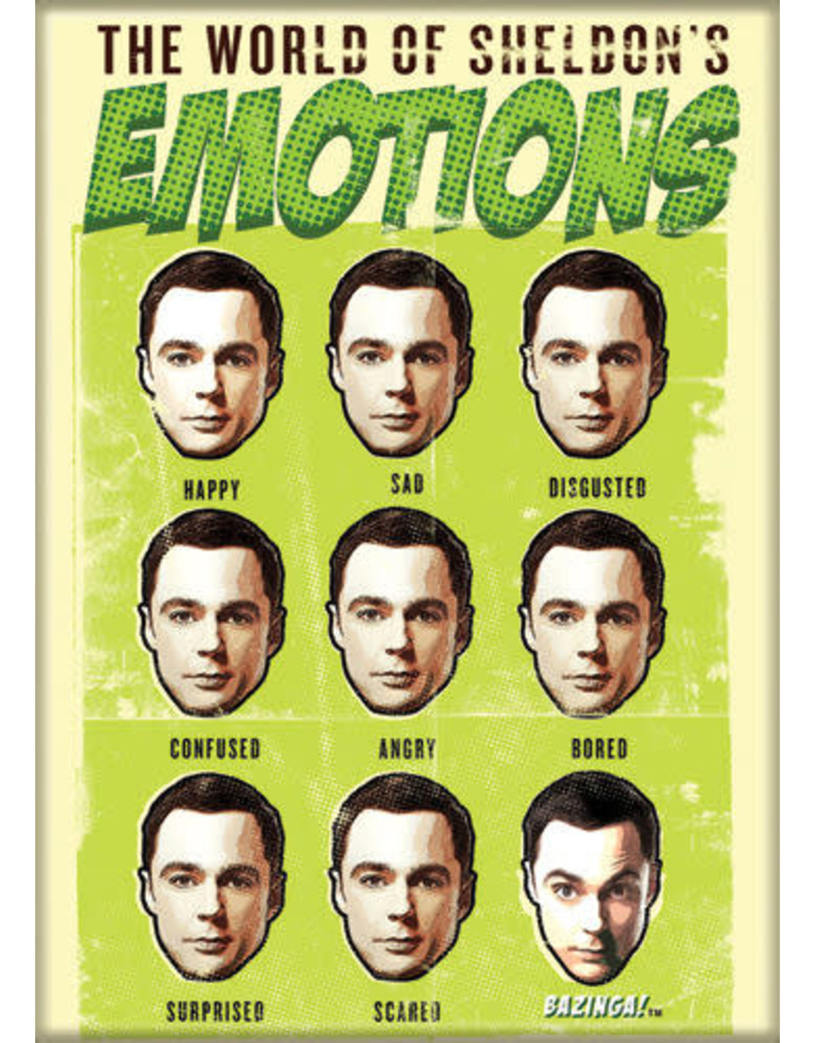 BBT World of Sheldon's Emotions Flat Magnet