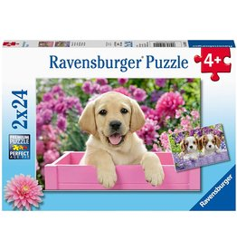 Ravensburger Me And My Pal 2x24 pc