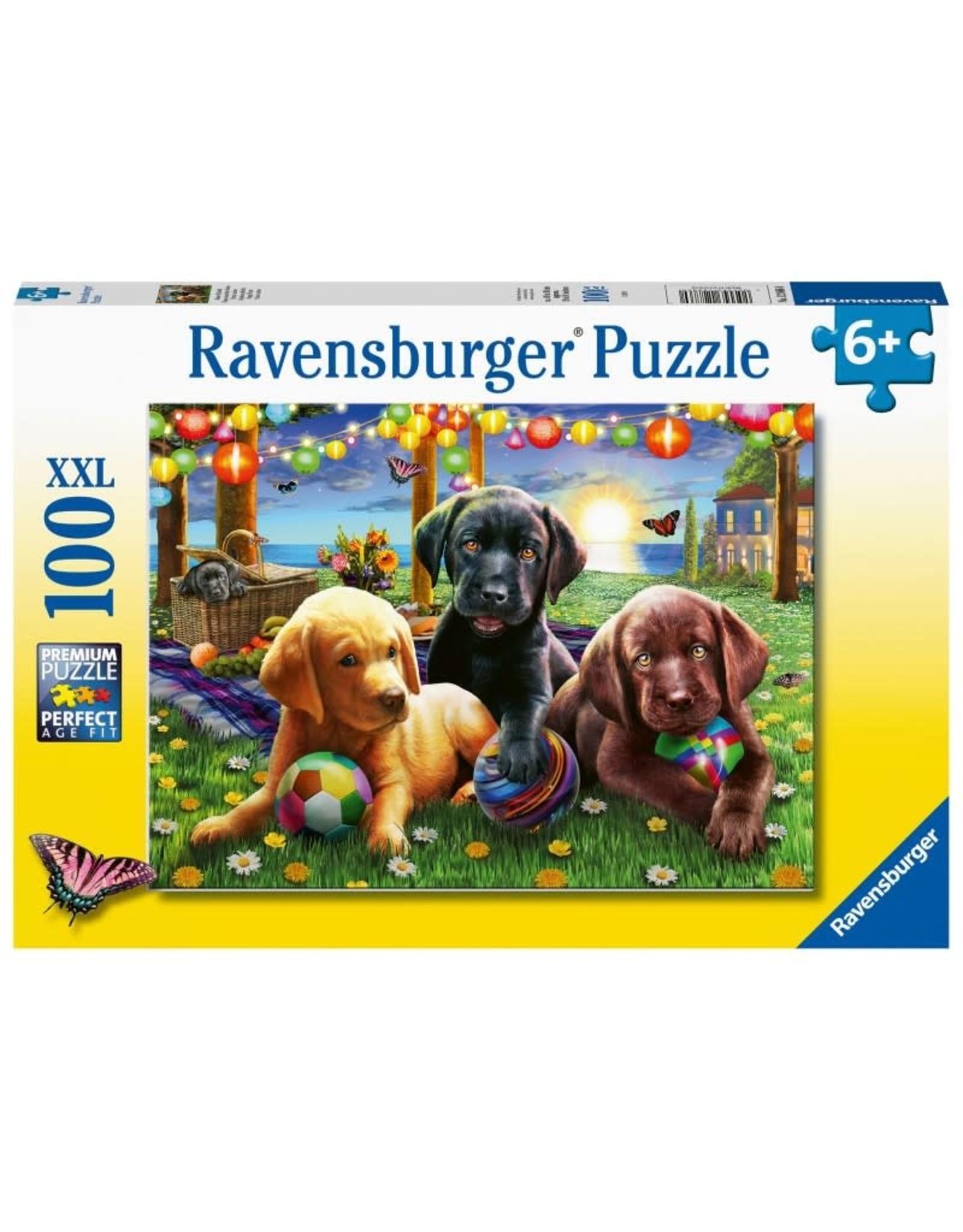 Ravensburger Puppy Picnic 100 pc