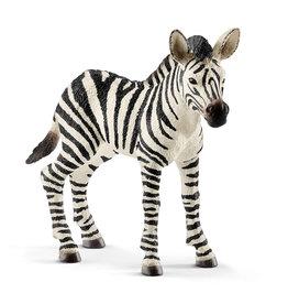 Schleich 2018 Zebra foal
