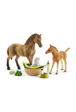 Schleich Sarah's Baby Animal Care with Quarter Horse