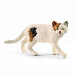 Schleich American short hair cat