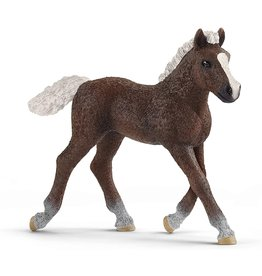 Schleich Black Forest Foal