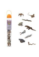 Safari Venomous Creatures