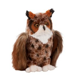 Douglas Einstein Great Horned Owl