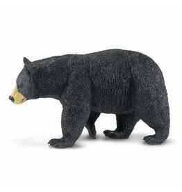 Safari Black Bear