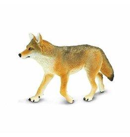 Safari Coyote