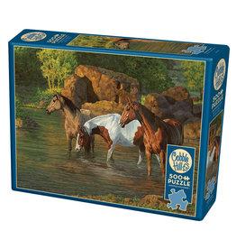 Cobble Hill Horse Pond 500 pc