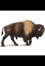 Safari Bison