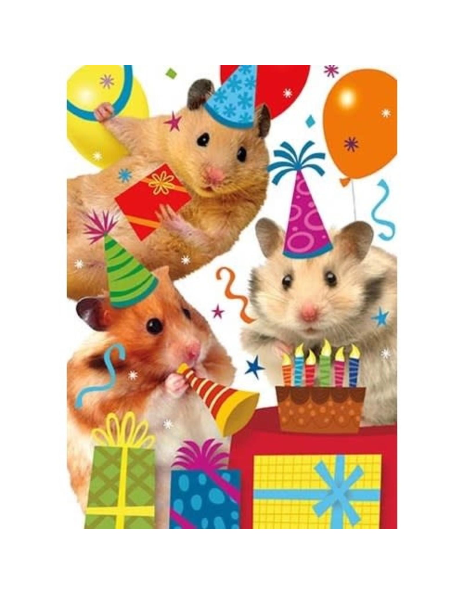 Peaceable Kingdom Hamster Party Birthday Card