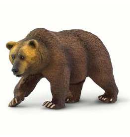 Safari Grizzly Bear
