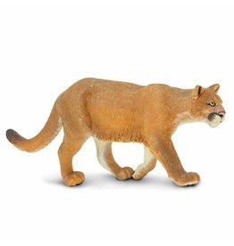 Safari Mountain Lion
