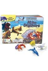 iKids Junior Groovies Books - At the Seashore