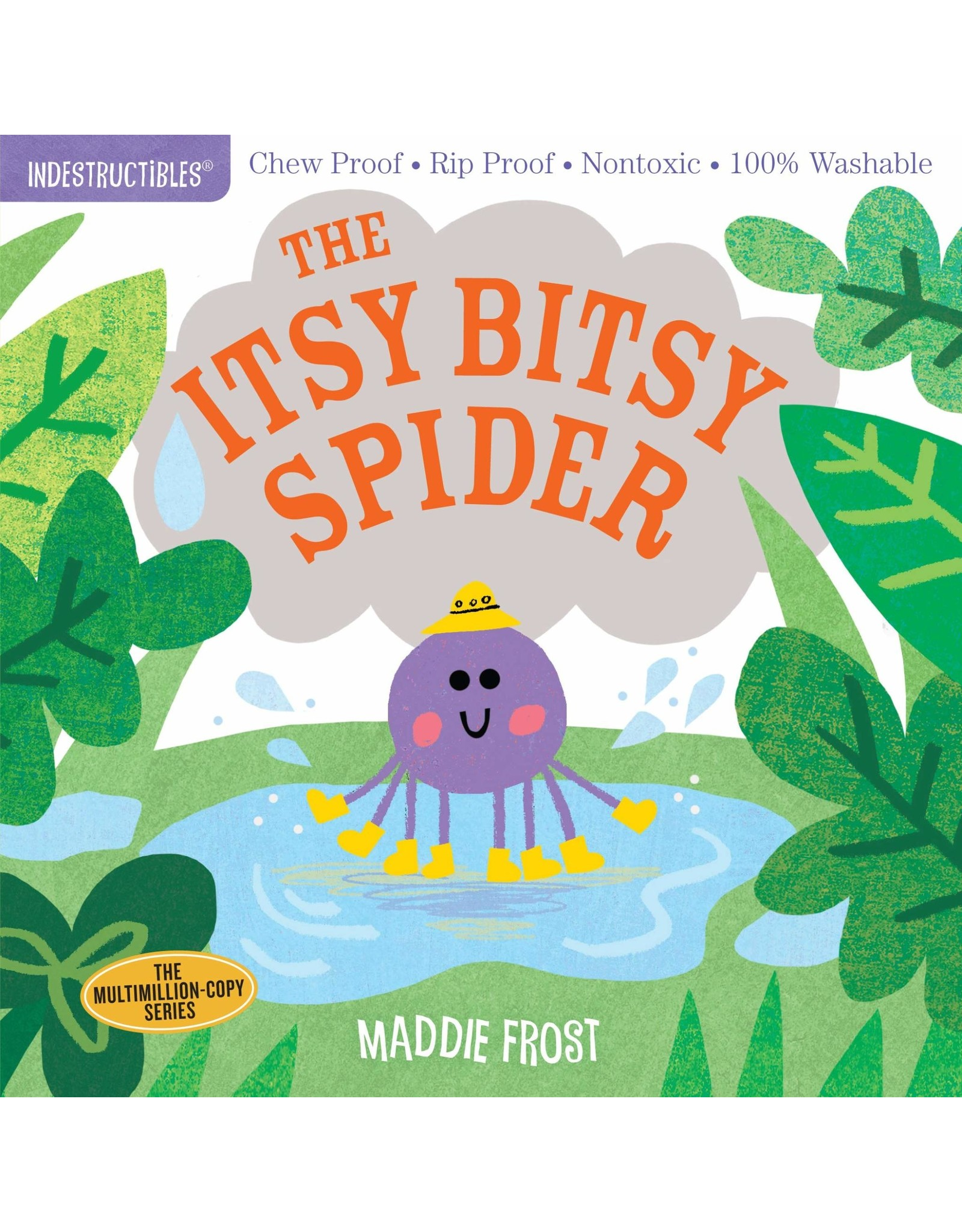 Indestructibles The Itsy Bitsy Spider