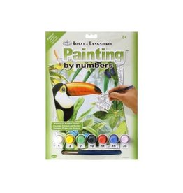 Royal & Langnickel Paint by Number: Jungle Toucan