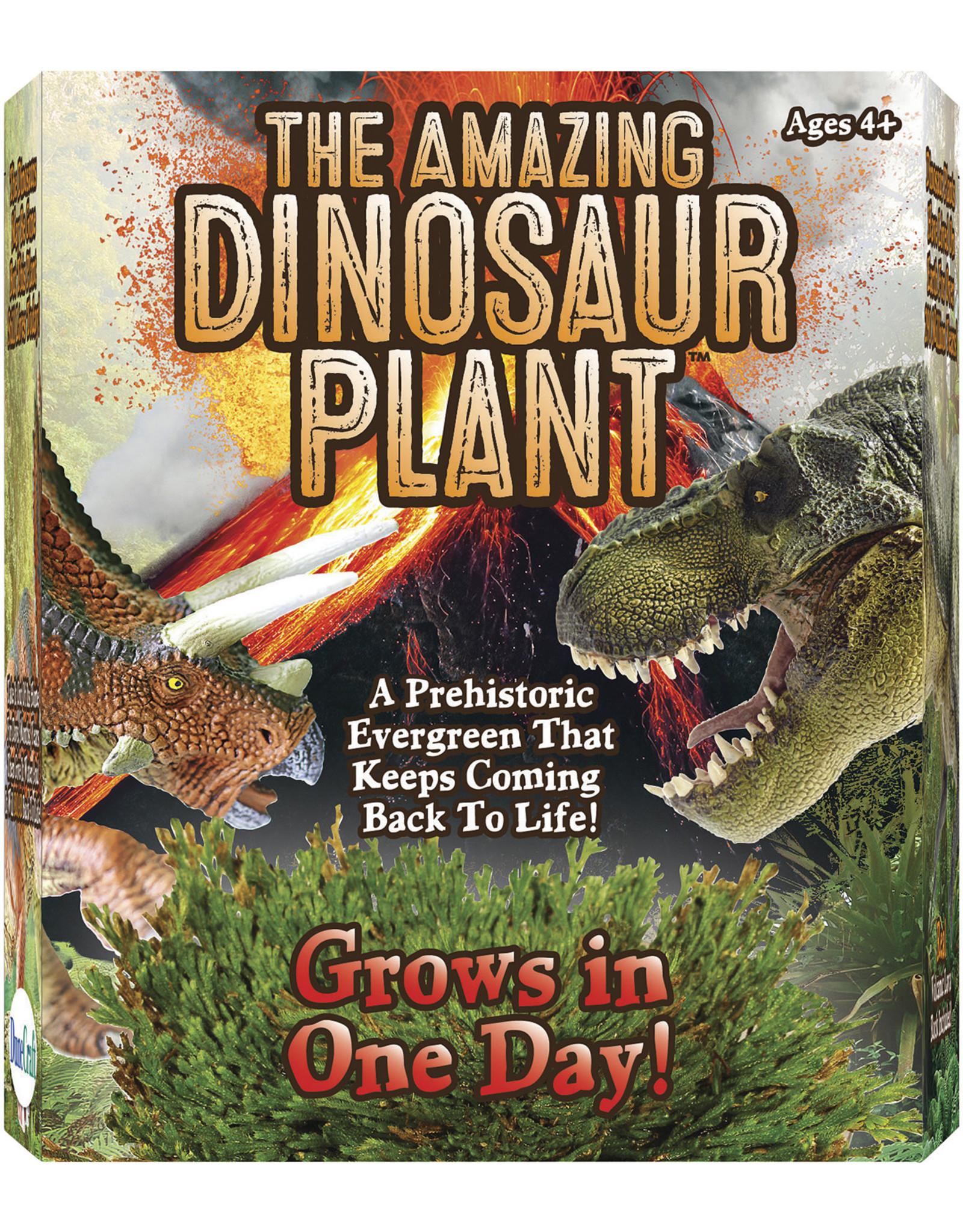 Toysmith Amazing Dinosaur Plant