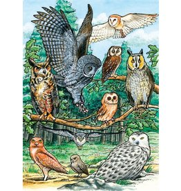 Cobble Hill North American Owls Tray Puzzle