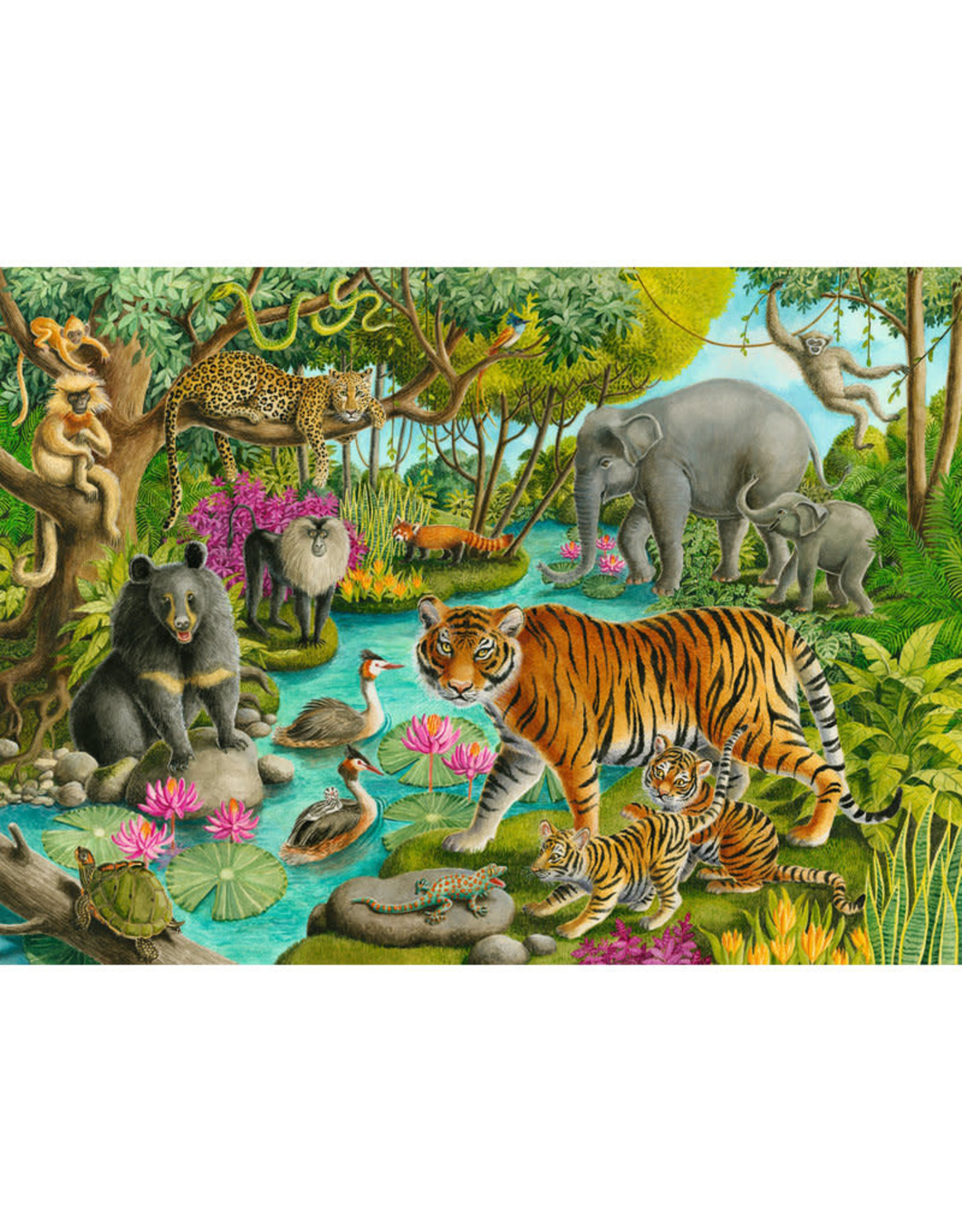Ravensburger Animals of India 60pc