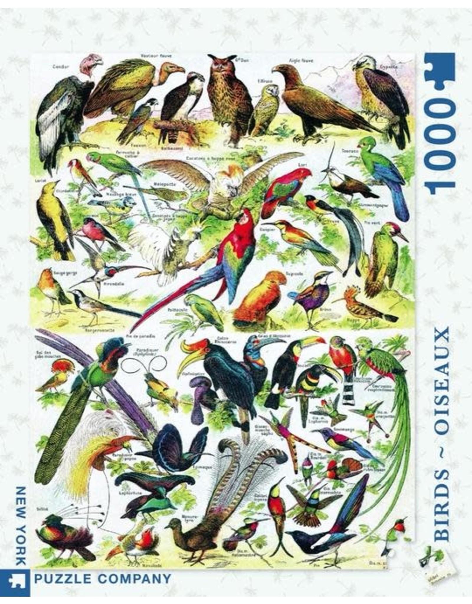 New York Puzzle Co. Birds - Oiseaux 1000 pc