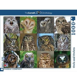 New York Puzzle Co. Owls and Owlets 1000 pc