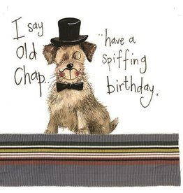Alex Clark Art Posh Paws Birthday Card