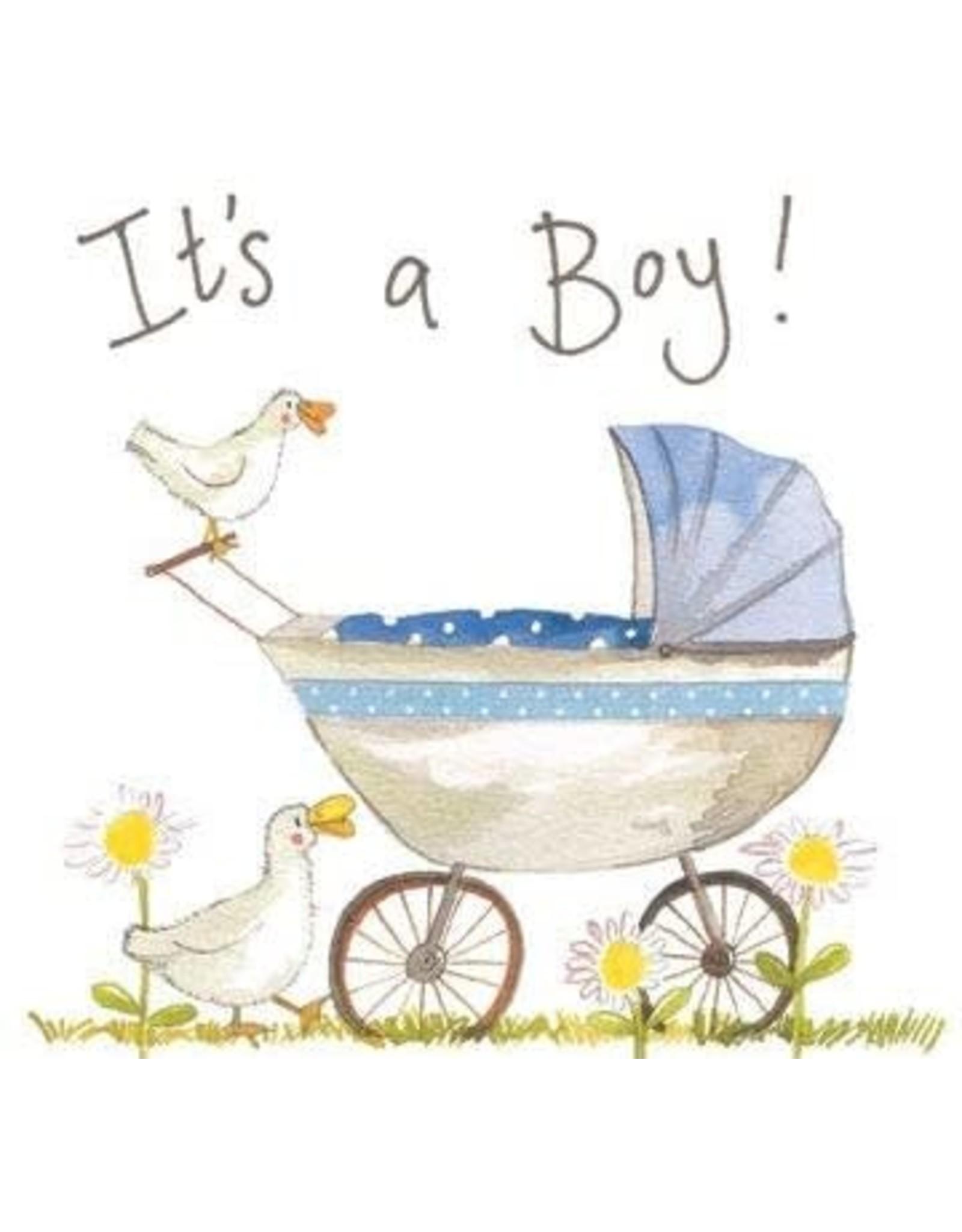 Alex Clark Art Baby Boy Card