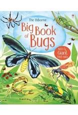 Usborne Big Book of Bugs