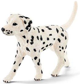 Schleich Dalmatian, Male
