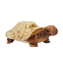 Douglas Speedy Tortoise