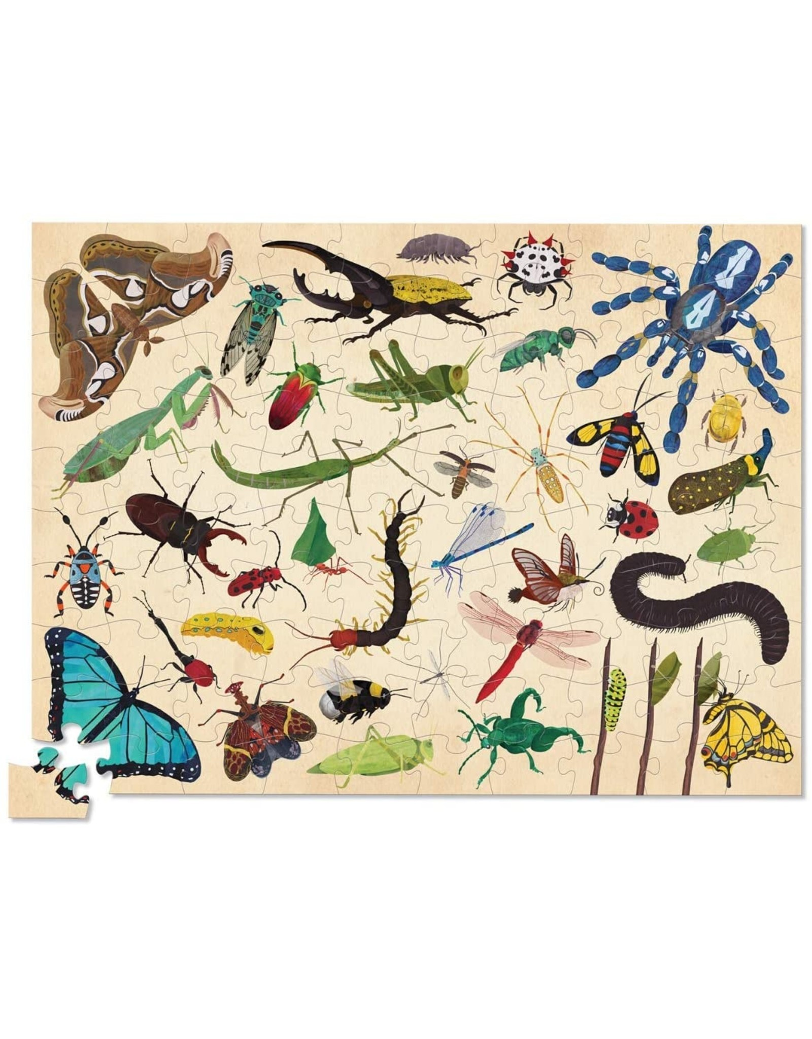 Crocodile Creek 36 Insects 100pc