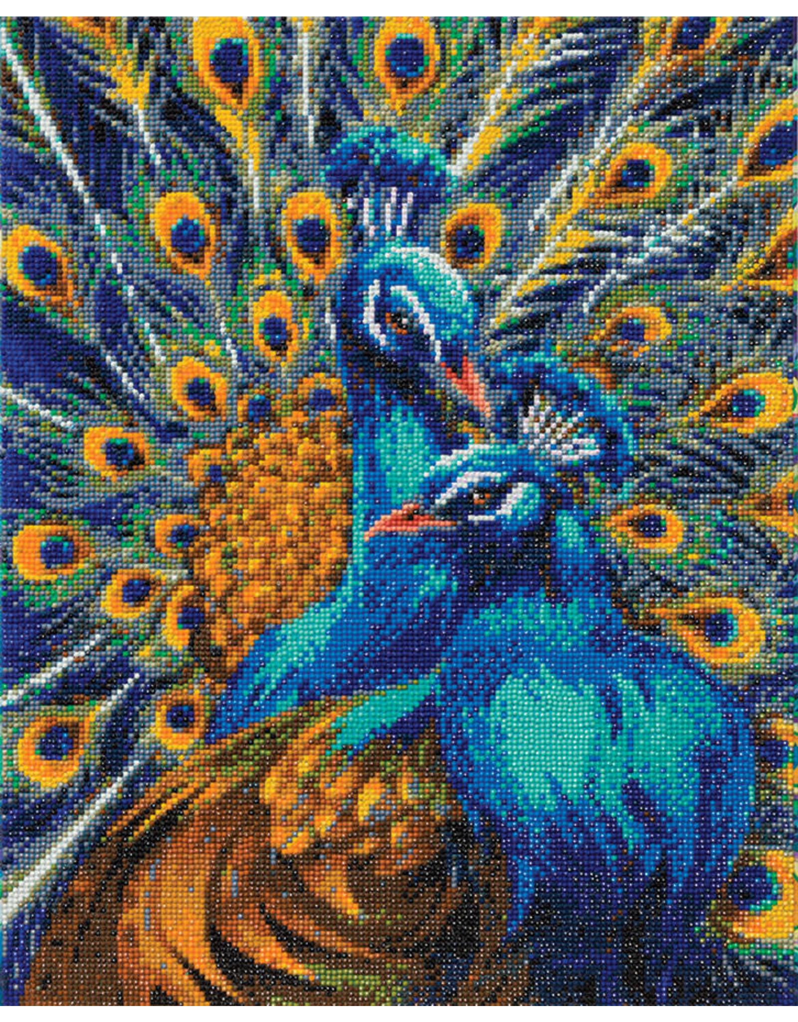 D.I.Y Crystal Art Kit Crystal Art Large Framed Kit - Blue Rapsody Peacocks