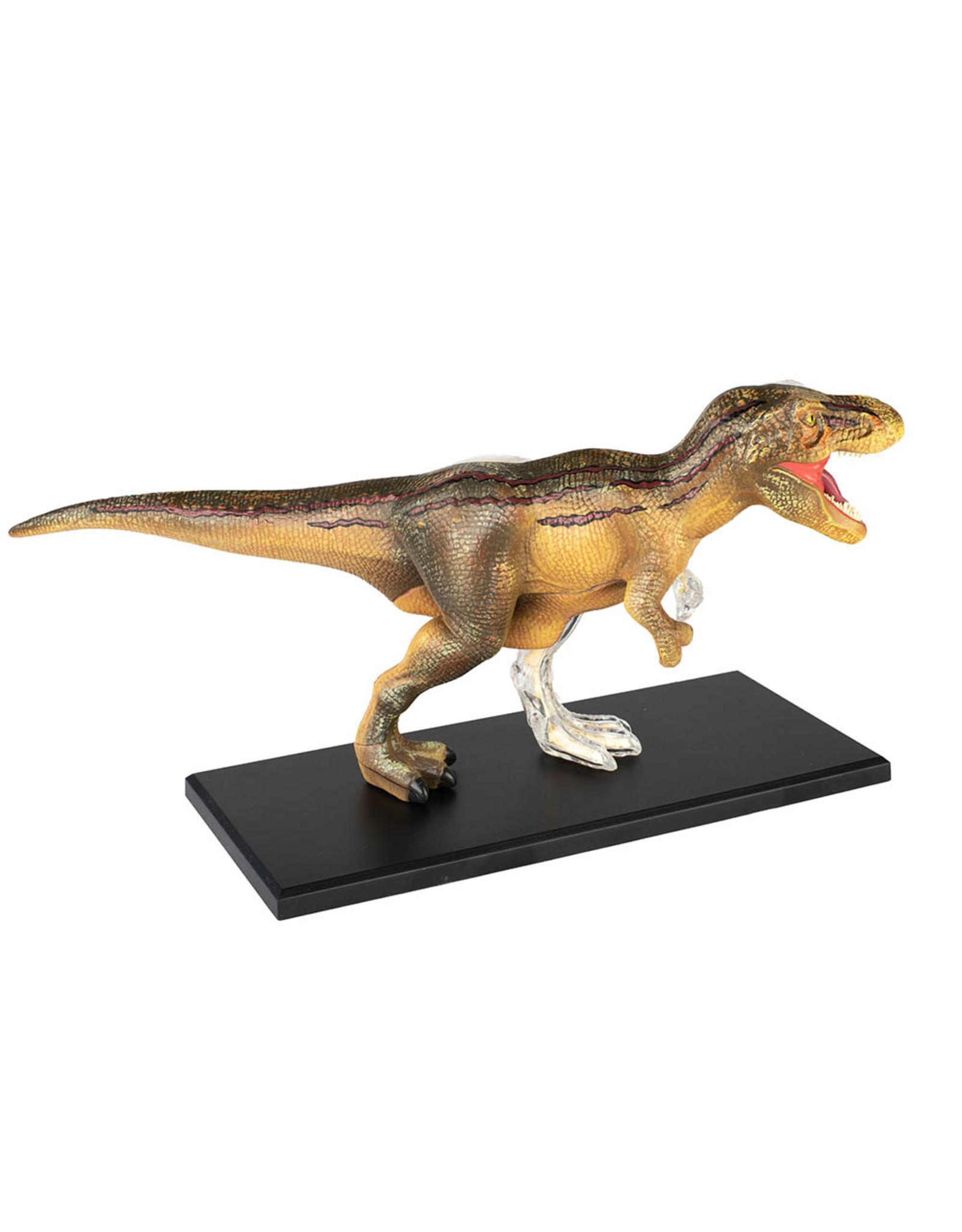 4D T-Rex Vision Model