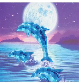 D.I.Y Crystal Art Kit Crystal Art Card Kit - Dolphins