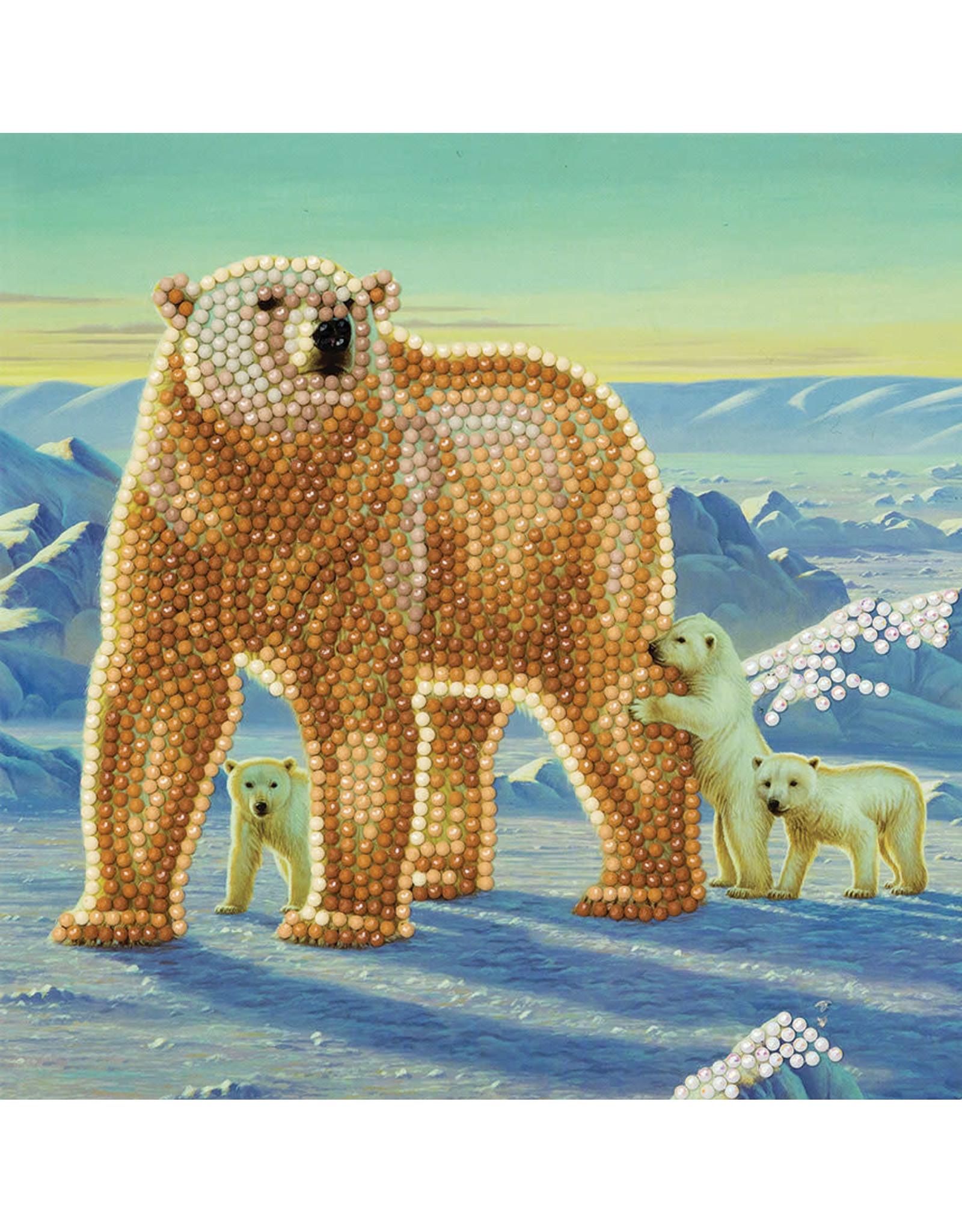 D.I.Y Crystal Art Kit Crystal Art Card Kit - Polar Family