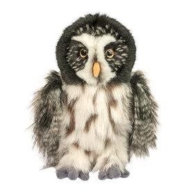 Douglas Darius Great Gray Owl