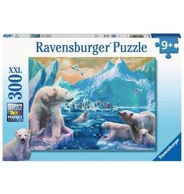 Ravensburger Polar Bear Kingdom 300pc