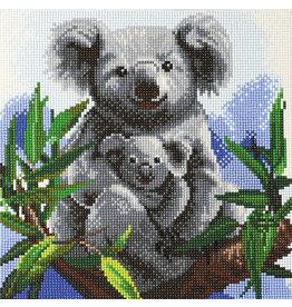 D.I.Y Crystal Art Kit Crystal Art Medium Framed Kit - Cuddly Koalas