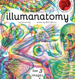 Quarto Illumanatomy