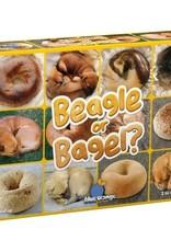 Blue Orange Beagle or Bagel?