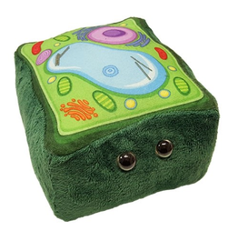 Giant Microbes Plant Cell