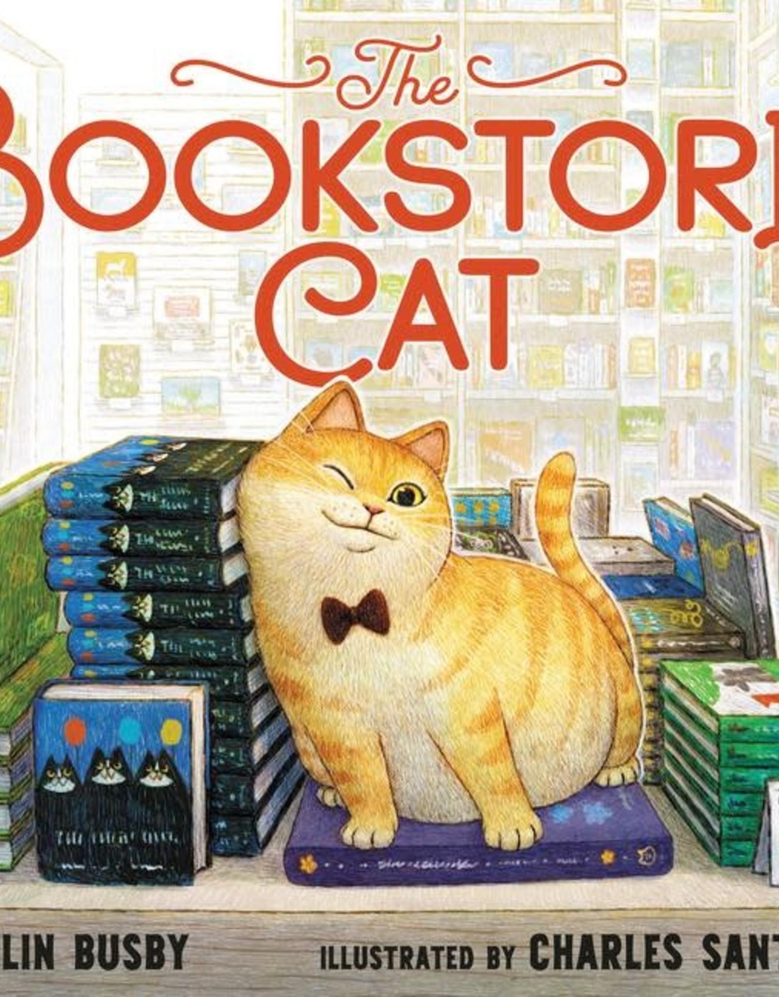 Harper Collins Bookstore Cat