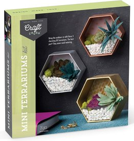 Ann Williams Mini Terrariums