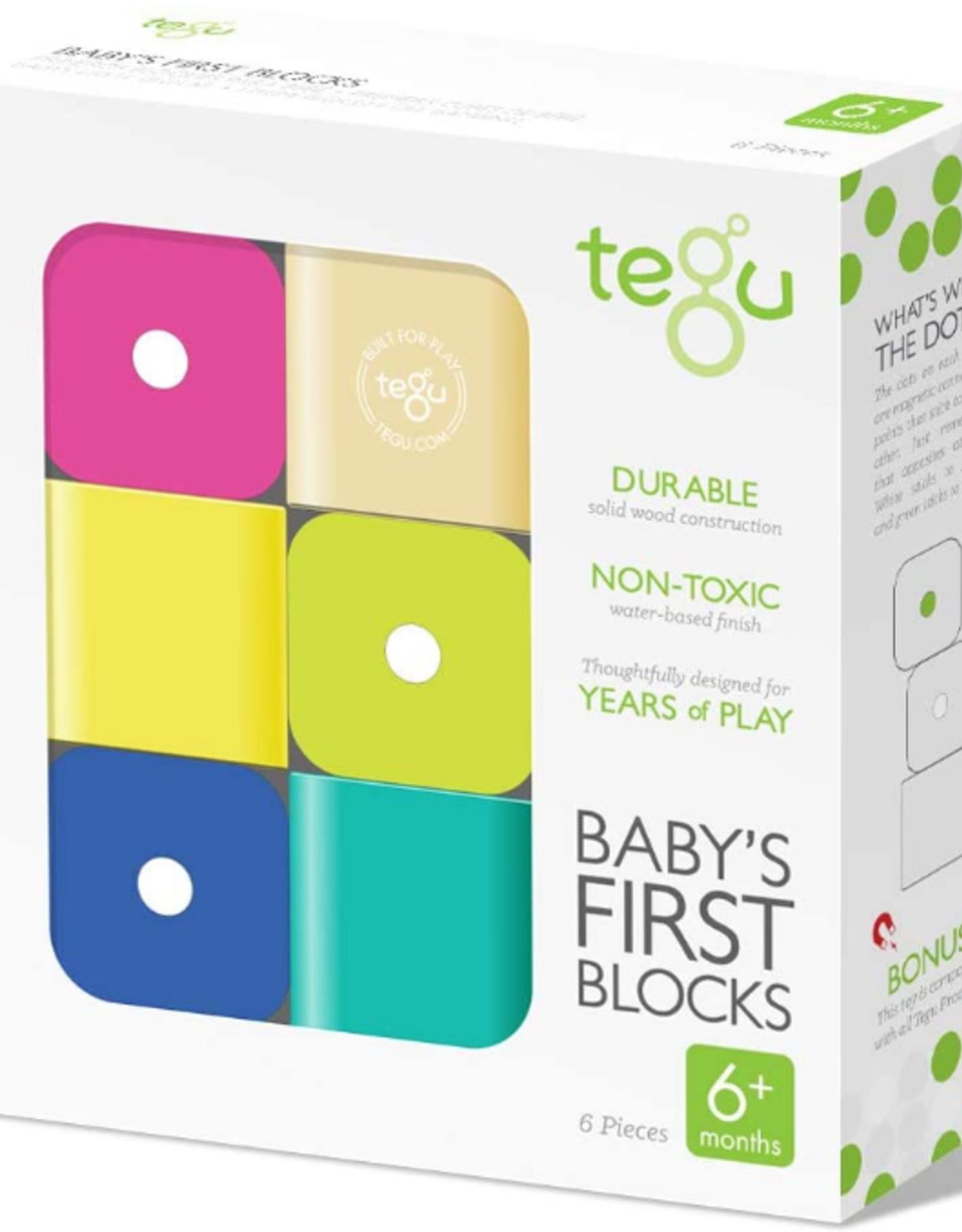 Tegu Baby's First Blocks: 6pc