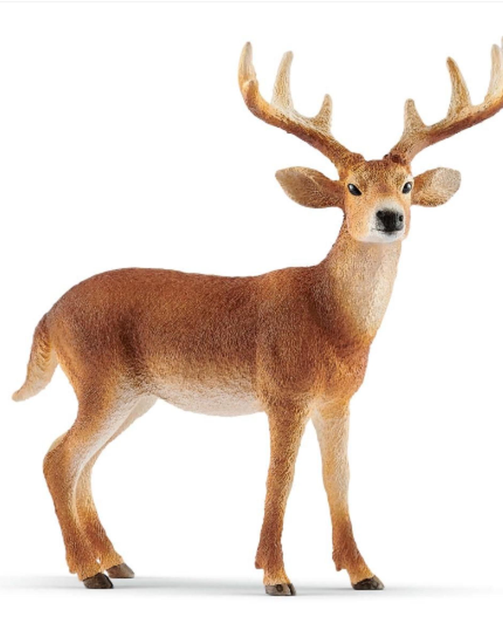 Schleich White-Tailed Buck