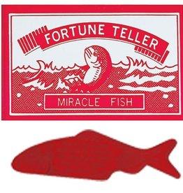 Copernicus Fortune Fish