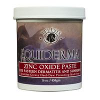 Equiderma Zink Oxide Paste 16 oz