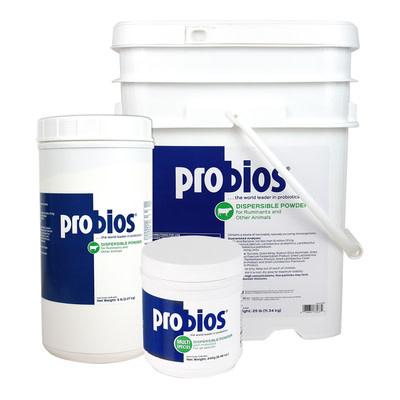 ProBios Powder 240g