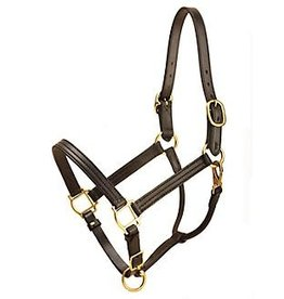 Tory Traditional Deluxe Leather Halter